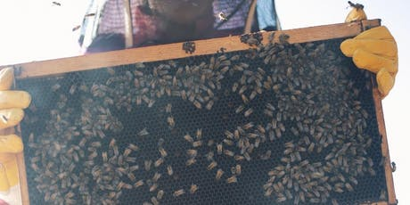 Honey House Tour Presented by Round Rock Honey (September 21 12:30PM) tickets