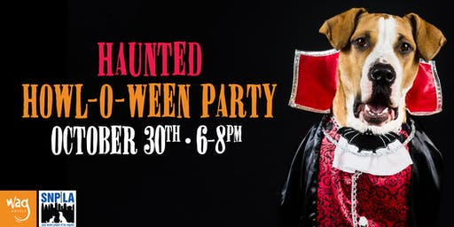 6th Annual Haunted Howl-o-ween Party for Dogs at Wag Hotels South Bay