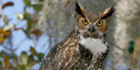 Owl-O-Ween!! tickets