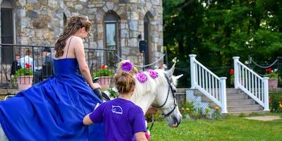 Unicorns at the Castle