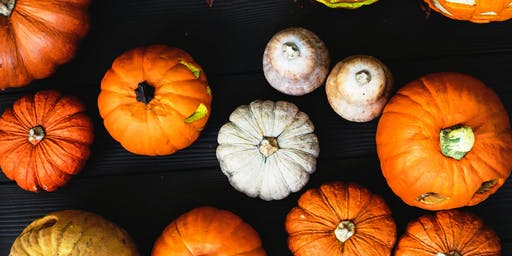 Fall Fest by QHS