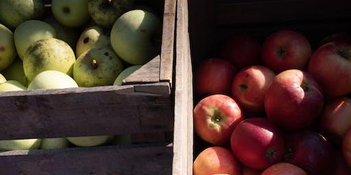 Local Apples Three Ways