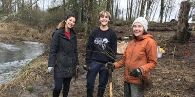 Steigerwald Lake National Wildlife Refuge Volunteer Planting- November 23rd