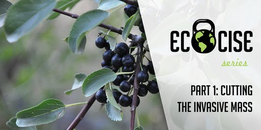 Ecocise! Part 1: Cutting the Invasive Mass