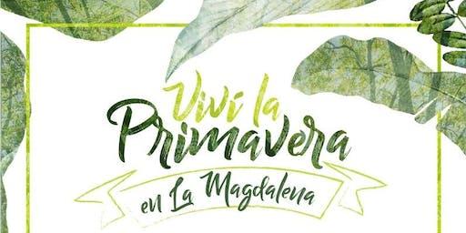 """Primavera en """" LA MAGDALENA"""""""