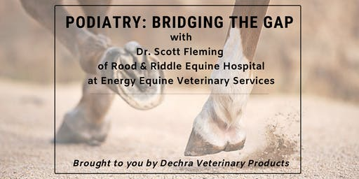 Sports Therapy Lecture Series: Podiatry - Bridging the Gap