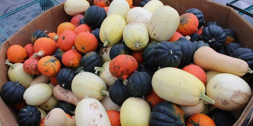 Product Knowledge: Winter Squash!