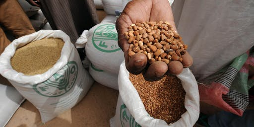 Systems for Change: Seeds & Vegetables for Global Food & Nutrition Security