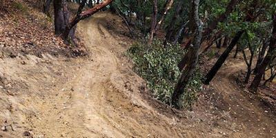 Ponti Trail Day