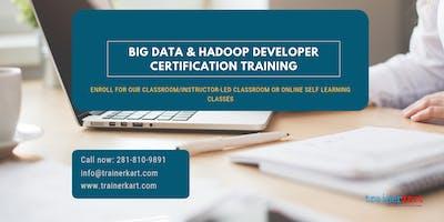 Big Data and Hadoop Developer Certification Training in Iowa City, IA