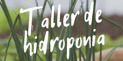 Taller de Hidroponia