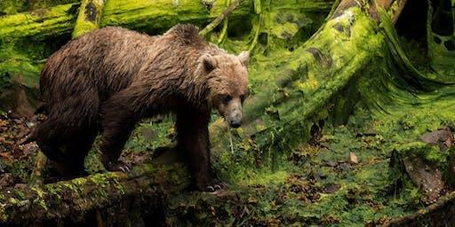 Wildlife Photography at the LA Zoo with Karen Schuenemann & Nikon - 3 Session Course