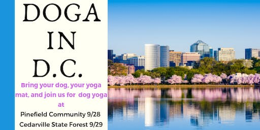 Doga - Dog Yoga (aka yoga for dogs)