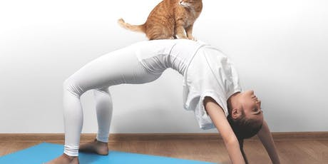 Kitty Acroyoga Intro Workshop tickets