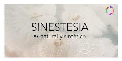 Sinestesia: Natural y Sintético/Inauguración