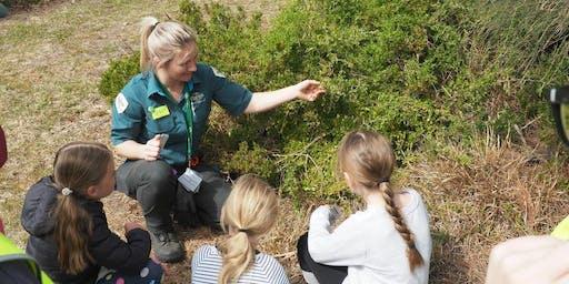 Junior Rangers Flora Explorer - Yarra Ranges National Park