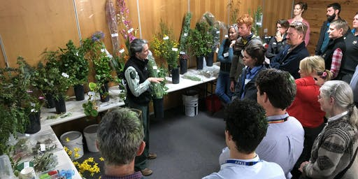 Castlemaine Weeds at the Early Stage of Invasion (WESI) ID training