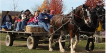 October PlayDate Hay Ride and Corn Maze
