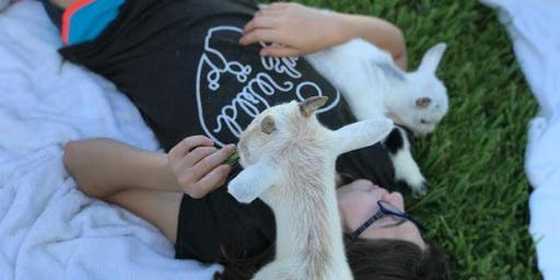 Goat Yoga Oklahoma City