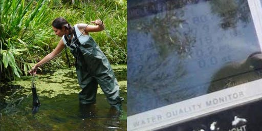 Water Quality - Coomera