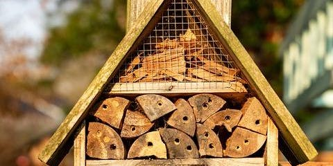 Family 'Build Your Own Bee Hotel' Workshop (School Holiday Program)