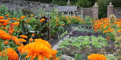 Gardening Workshop: Spring into Action tickets