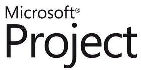 Microsoft Project Level 1