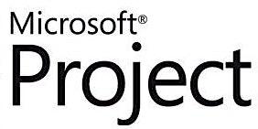 Microsoft Project Level 1