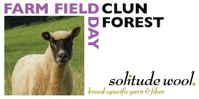 Farm Field Day: Clun Forest