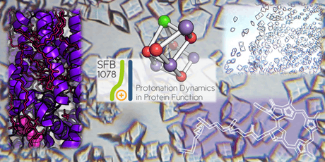 Protein crystallization and the dance of molecules Tickets