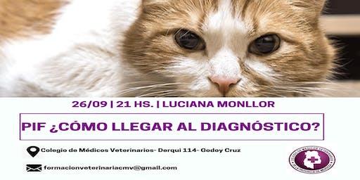 PIF ¿CÓMO LLEGAR AL DIAGNÓSTICO? de la M.V. Luciana Monllor