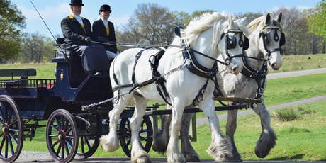 Magical Carriage Rides tickets