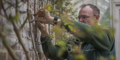 Nicholsons Pruning Workshop tickets