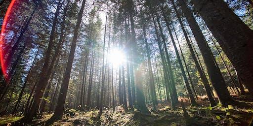 Maine's New Forest Economy Symposium