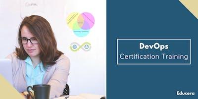 Devops Certification Training in Evansville, IN