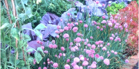 Fall Vegetable & Herb Garden tickets