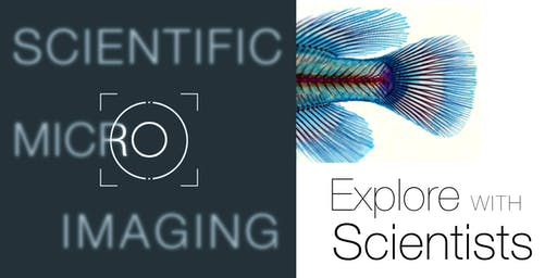 Explore Scientific Micro Imaging with Stowers
