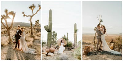 Joshua Tree Retreat & Shoot Out