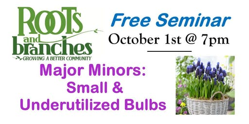 Free Seminar: Major Minors: Small & Underutilized Bulbs
