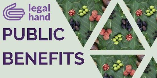Public Benefits 102