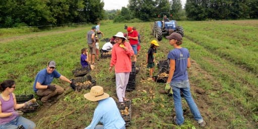 Crop Mob at the Intervale Community Farm