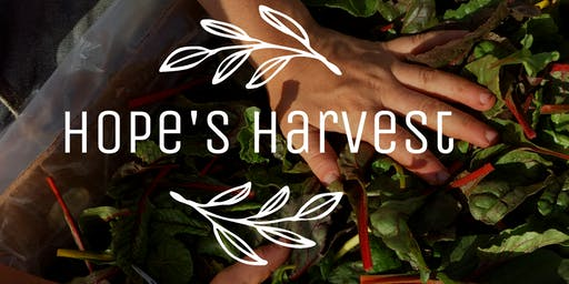 Gleaning Trip with Hope's Harvest - Thursday, 9/19