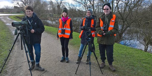 Introduction to Bird identification, Saturday 19th October 2019 with London Wildlife Trust - Reg volunteers only