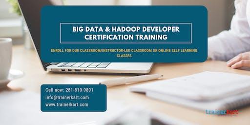 Big Data and Hadoop Developer Certification Training in  Sudbury, ON