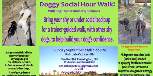 Shy Dog Social Hour Walk