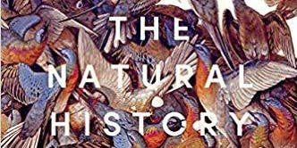 The Natural History of Sexuality in America with Dr. Greta LaFleur