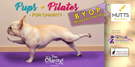 Pups & Pilates-For Charity: BYOP at MUTTS Canine Cantina