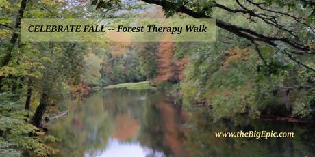 Celebrating Fall Forest Therapy Walk tickets