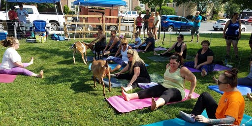 Goat Yoga at the Farmers' Market