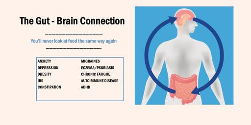 The Gut - Brain Connection